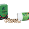 panax ginseng capsule