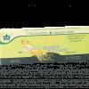 ginseng panax beneficii